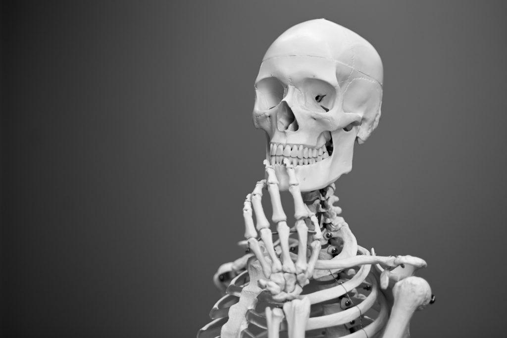 are-teeth-bones